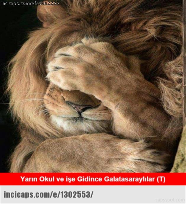 Derbi capsleri sosyal medyayı salladı  Dün akşam Kadıköy Şükrü Saracoğlu stadında oynanan Fenerbahçe-Galatasaray derbisinin kazananı yine Fenerbahçe oldu. Sosyal medyada caps çılgınlığı yaşandı.