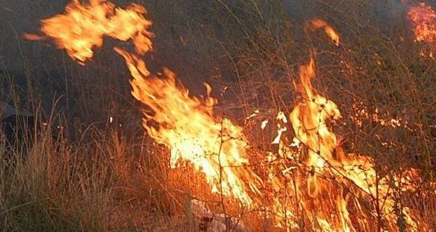 Çalılıkları yakmak isterken yanarak can verdi