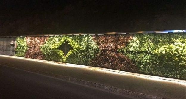 Mardin'deki 'Dikey Bahçe' ışıklandırıldı