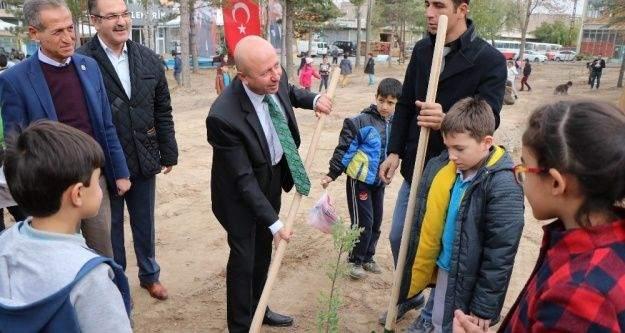 Öğrencilerin büyüttüğü fidanlar toprakla buluştu