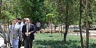Kırıkkale Şehir Parkı'na kavuşuyor