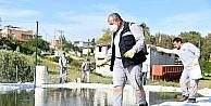 Mersin'de haşere ile mücadele çalışmaları sürüyor