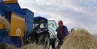 Vali Bilmez, çiftçilerle birlikte tarlada hasat yaptı